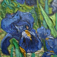Irises - Van Gogh