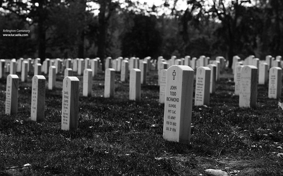 Arlington Cemetery (detail)
