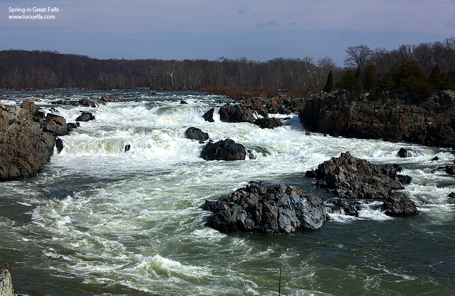 Great Falls - VA