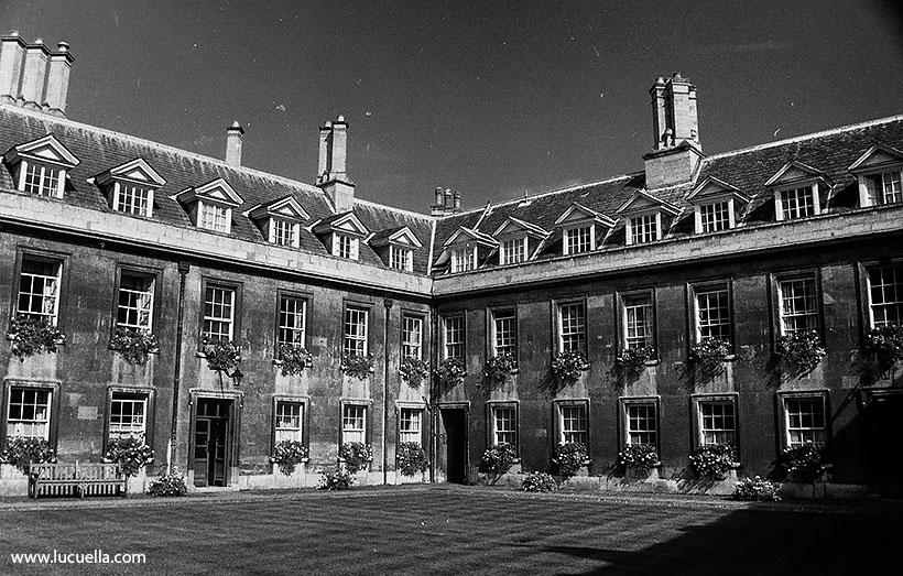 Caius College, Gonville Court