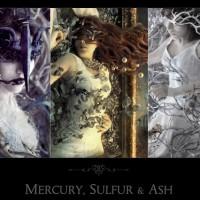 Mercurio, Azufre y Ceniza, por Marcela Bolivar